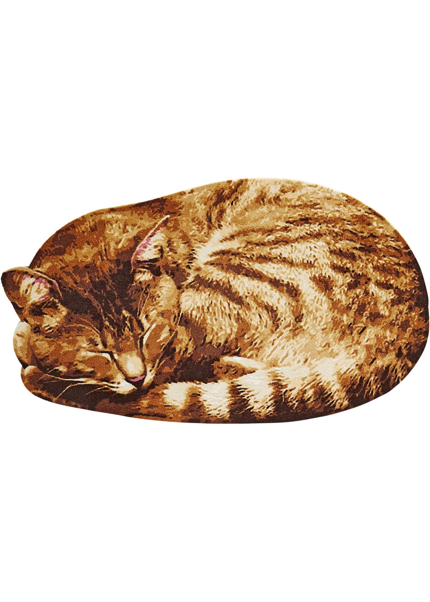 Zerbino Cat  Marrone  - b