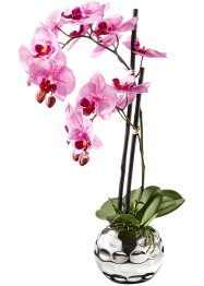 Orchidea artificiale, bpc living, Fucsia / argento