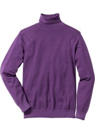 Pullover dolcevita regular fit, bpc selection
