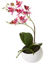"Pianta artificiale ""Orchidea"" in vaso, bpc living"
