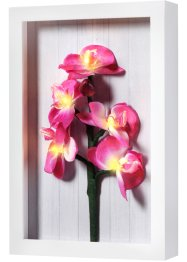 "Quadro con luci LED ""Orchidee"", bpc living"