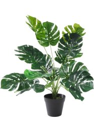 "Pianta artificiale ""Monstera"", bpc living"