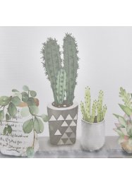 Tenda a vetro con cactus, bpc living bonprix collection
