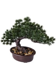 Bonsai artificiale con pietre, bpc living bonprix collection